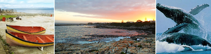 Hermanus Accommodation and Tourist Guide